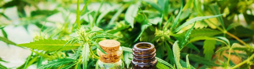 Right ways to take in marijuana for goodness of health